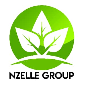 Nzelle Group